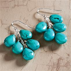 Raindrop Caribbean Earrings (15 Ctw)