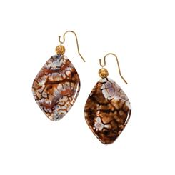 Abstract Agate Earrings