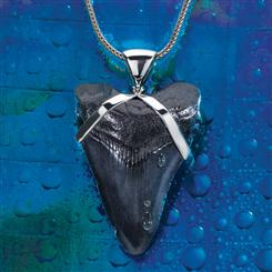 Giant White Shark Tooth Pendant & Chain